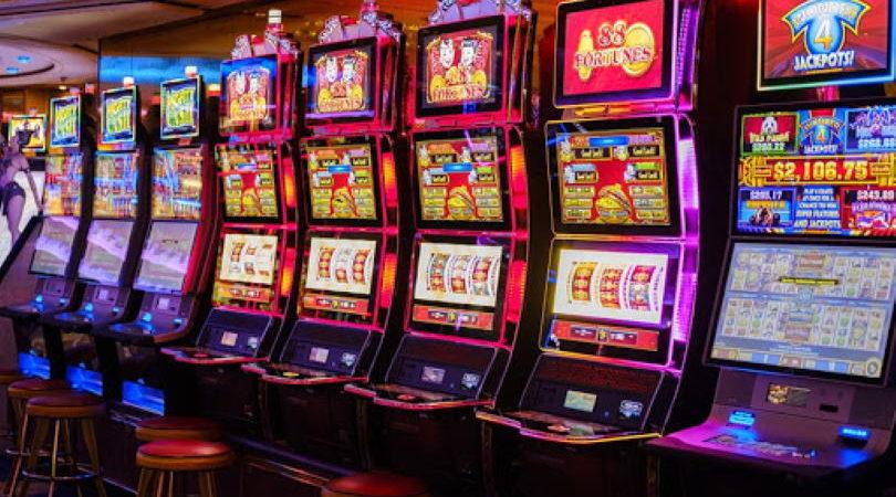 wild casino online Casino